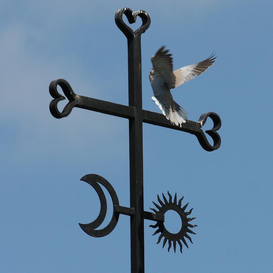 La croix de la Roche d'Or. Envol d'une colombe