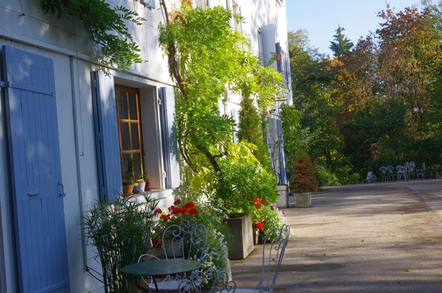La Roche d'Or. Terrasse de la Maison Carrée. La lumière de la verdoyance