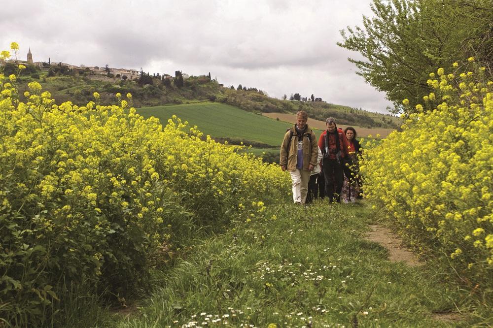 Les Fontanilles. Retraites itinérantes. Lourdes, les chemins de Bernadette vers Bartrès 2
